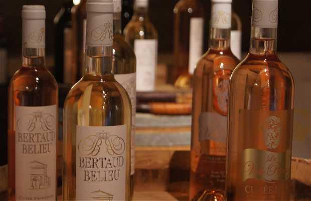 Domaine viticole Bertaud-Belieu