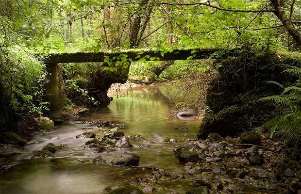 La Peña River