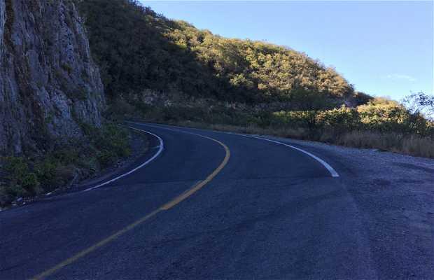 Carretera A Rayones