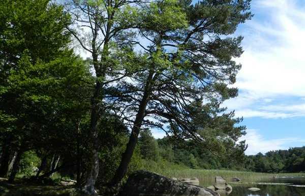 Sidobre - Lac des Merles
