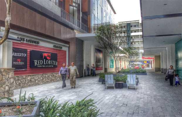 Centro Comercial Nuevo Sur