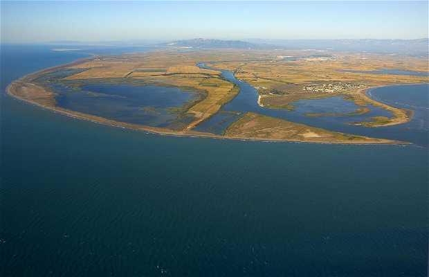 Desembocadura del delta de l'Ebre