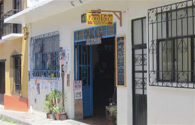 El Cocoliche