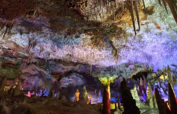Cavernas do Drach