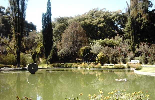 Martin Cardenas Botanical Garden