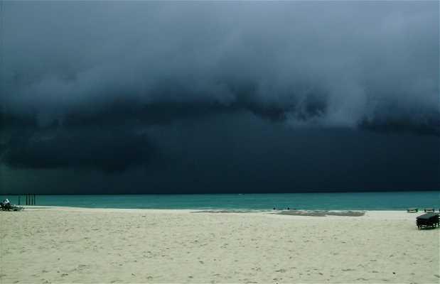 Playa de Eagle Beach