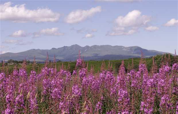 Montes del Sancy