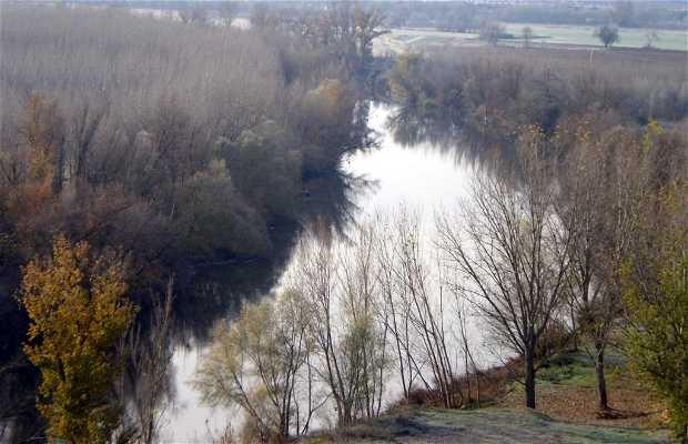Pisuerga River passing through Simancas