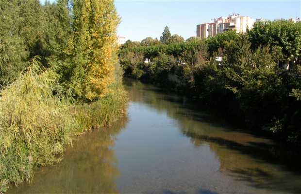Río Arlanzón (paseo)