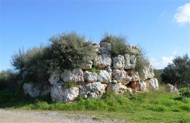 Yacimientos Arqueológicos Poblat dels Racons- Son Roig