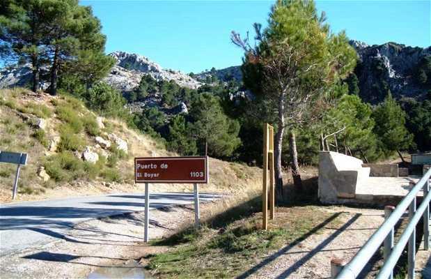 Mirador Puerto del Boyar