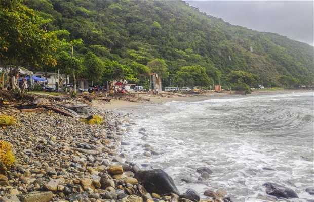 Playa Punta Los Caracas