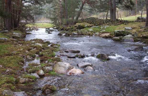 Curso inicial del río Tormes