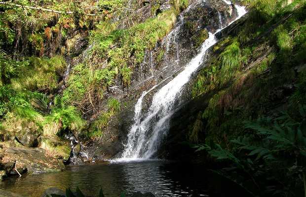 Valle de Los Oscos