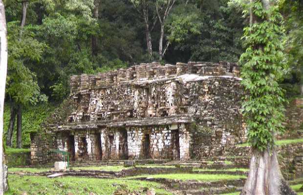 Rovine di Yaxchilán