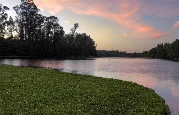 Laguna Las Mellizas
