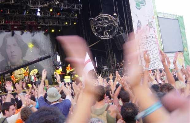 Festival Internacional de Benicàssim (FIB)