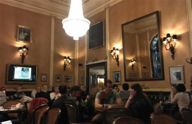 Caffetteria Muvesz