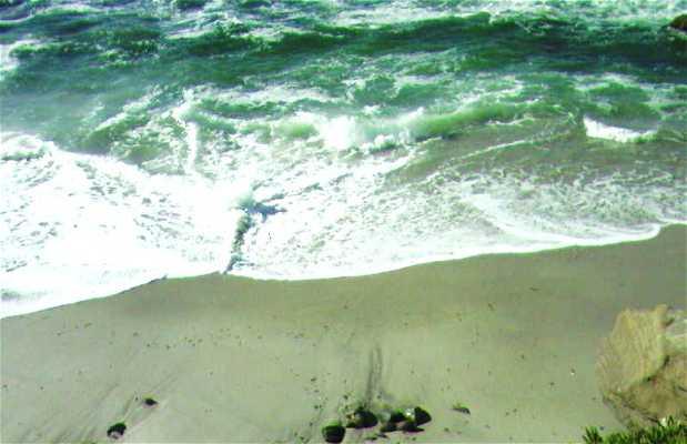Bahía de La Jolla