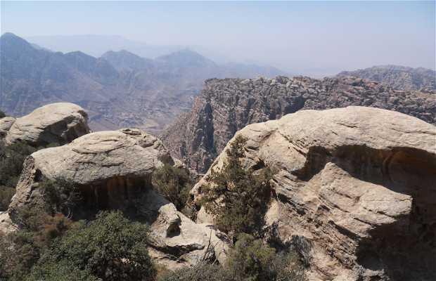 Reserva Natural de Dana