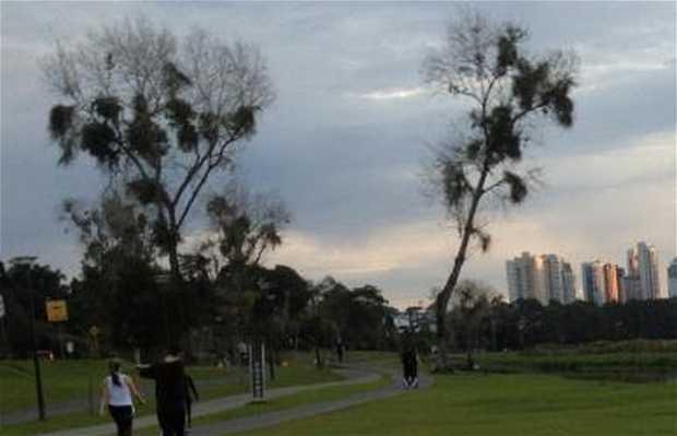 Parco Barigui