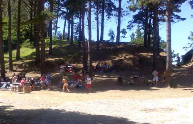 Playa Ogeia