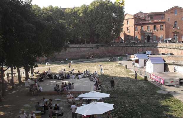 Plaza de la Daurade