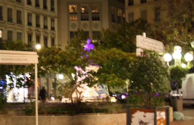 Plaza Ampère