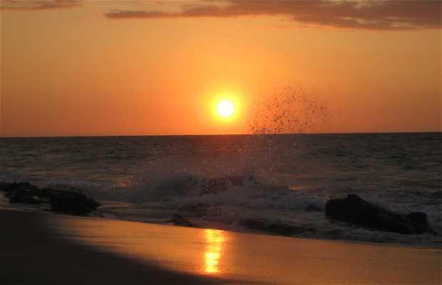 Playas de Tumbes