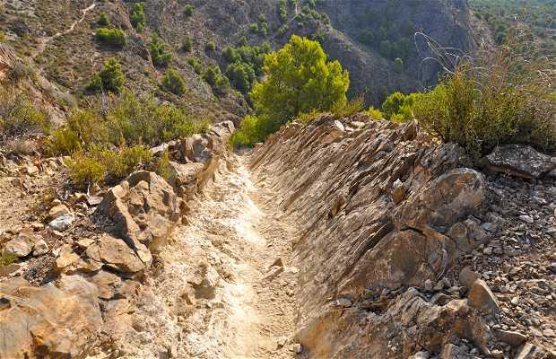 Ruta Al Pico Del Águila