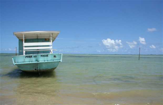 Playa del Toque