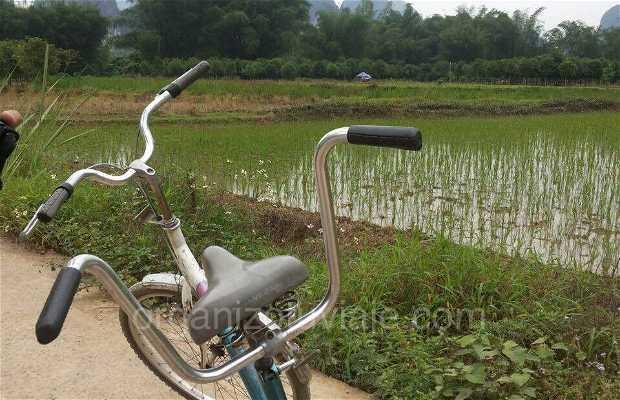 Ruta guiada en bici por yangshuo