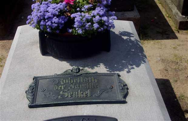 Saint Johannis Friedhof Cemetery