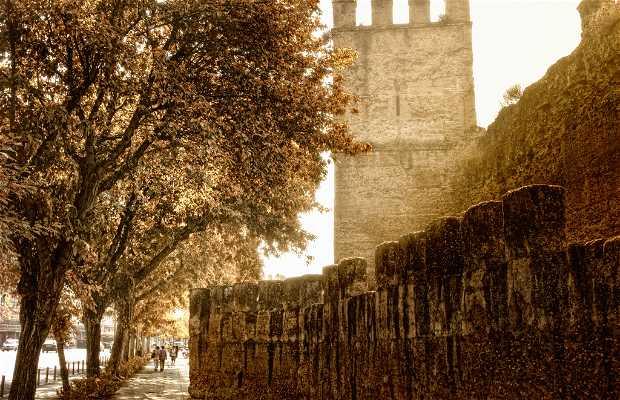 Walls of Seville