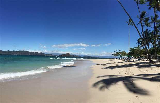 Isole Tortuga