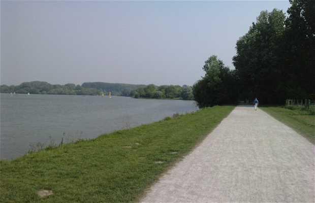 Lago de la garza