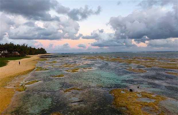 Playas en Isla Mauricio