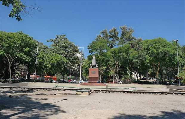 Jardim São João