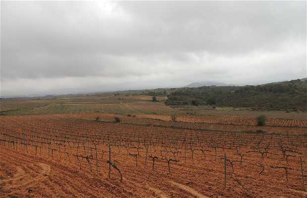 Mirador Paisajes de Montferri