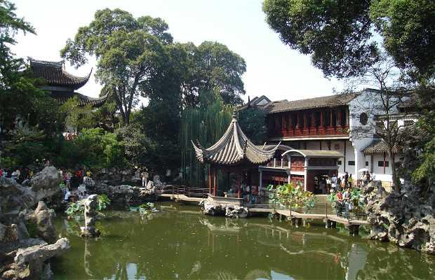 Lions forest garden