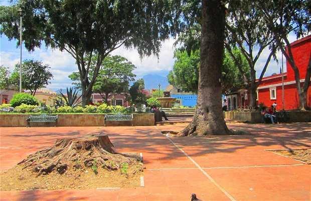 Parque Nuestra Senora de la merced