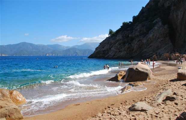 Playa Fighjola