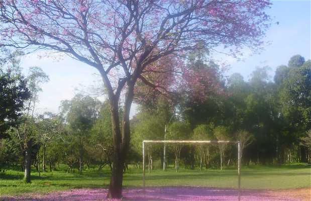 Le Parc Mburicao