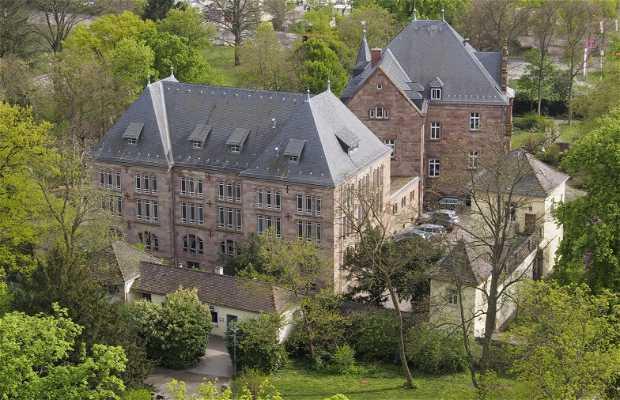Torre de Observación Catedral de Speyer