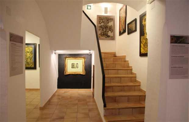 Museo Antonio Ferri
