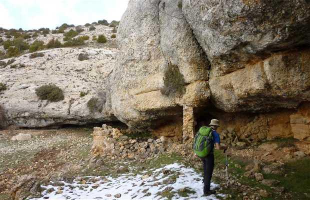 Cova del Moloner