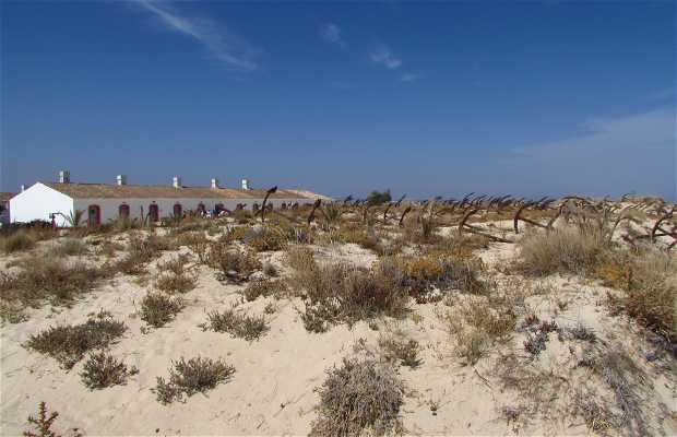 Cemitério das Âncoras