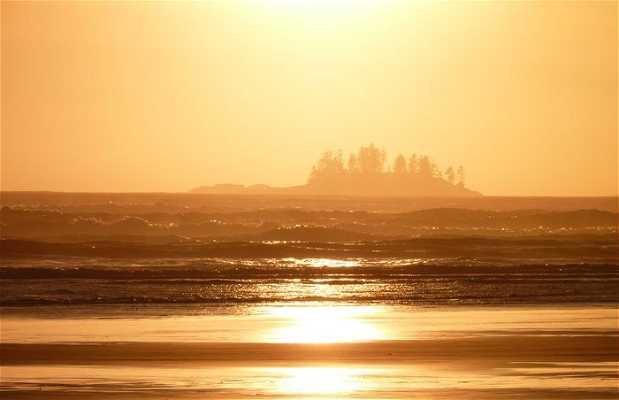 Coucher de soleil sur Long Beach