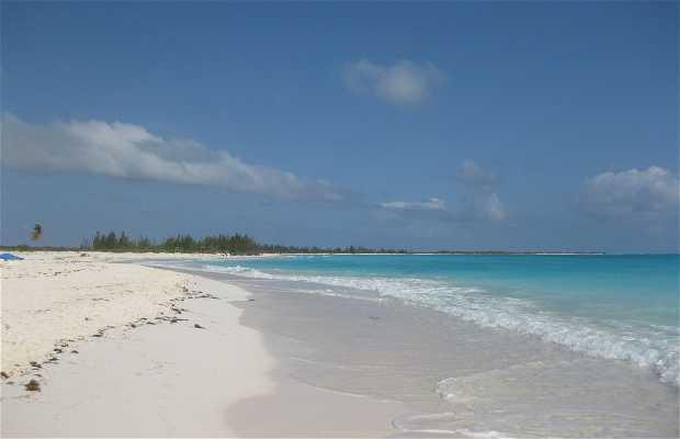 Playa Sirenas