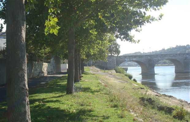 Orillas del Loira cerca de Millocheau